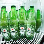 Kühlbox Test – die besten Modelle im Vergleich